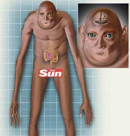Ученые представили как будет выглядеть человек через тысячи лет