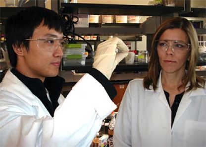Гидрогель защищает медицинские имплантаты от иммунной атаки