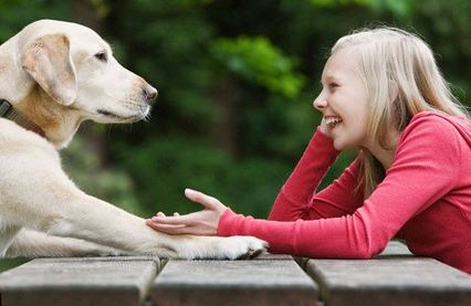 Ученые создадут устройство, чтобы понимать язык животных