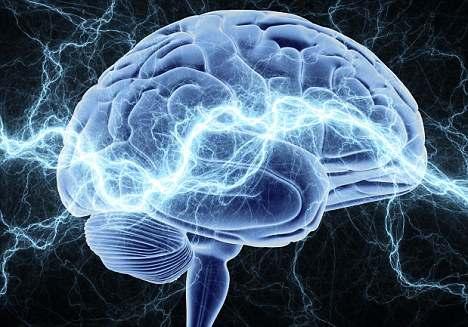 Министерство обороны США создало первое в мире хранилище тканей головного мозга
