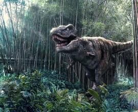 1257526281_dinozavr10