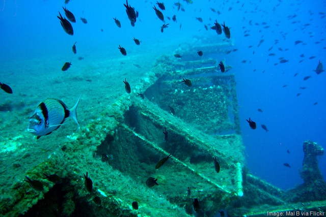 2013-02-19_04_Shipwreck-Diving.jpg
